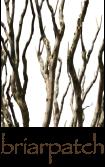 briarpatch-logo-original-no-tagline