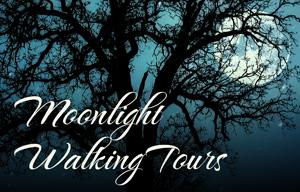 Moonlight_teal-300x192